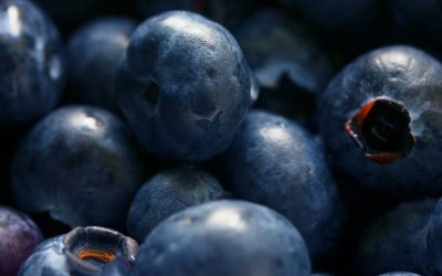 BLUEBERRY CASSEROLE (vegan, gluten-free, sugar-free)