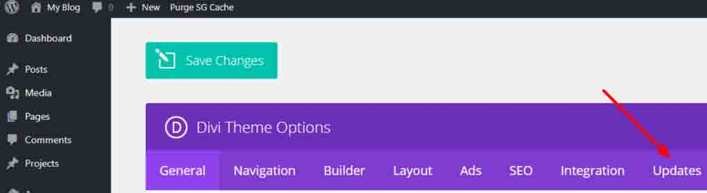 Divi installation - divi theme options