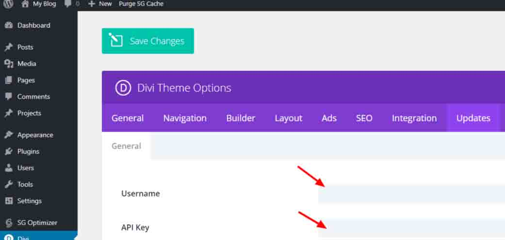 Divi installation - divi theme options - updates